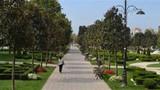 Millet Bahçesi nedir, nerelere yapılacak, hangi ülkelerde var? Dünyanın en büyük 20 millet bahçesi