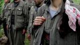Teslim odu! PKK'nın iç yüzünü anlattı