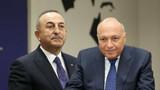 Çavuşoğlu Mısırlı mevkidaşıyla görüştü