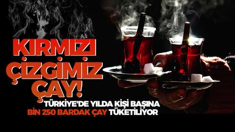 Türkiye'de yılda kişi başına 1250 bardak çay tüketiliyor. Peki çayı neden bu kadar çok seviyoruz?