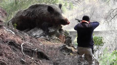 Burdur'da domuz avına çıkan bir kişi arkadaşını vurdu