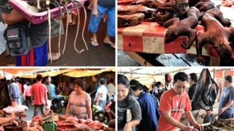 Burası dünyanın en korkunç yiyecek pazarı...