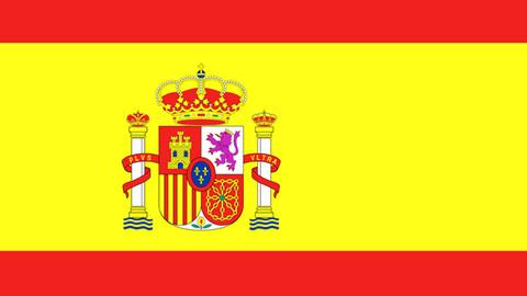İspanya'nın yeni teknik direktörü belli oldu