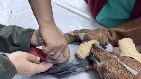 Murat Özdemir'in işkence ettiği papağanın tedavisi yapıldı