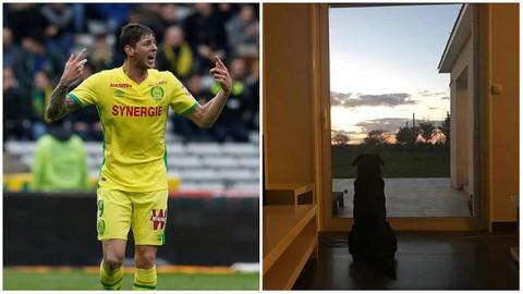 Emiliano Sala'nın köpeği sahibini bekliyor!