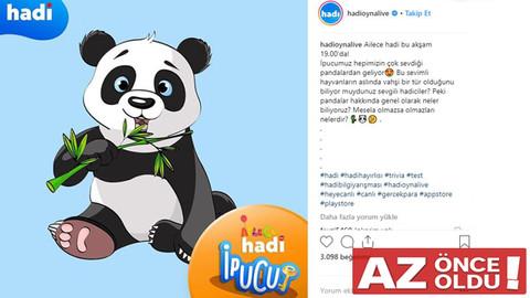 13 Şubat Hadi İpucu Pandaların olmazsa olmazları nedir?