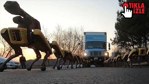Bu robotlar kamyon çekebiliyor!