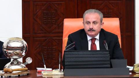 """Meclis Başkanı Şentop'tan """"Barış Pınarı Harekatı"""" mesajı"""