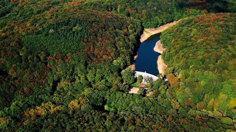 Tarım ve Orman Bakanlığı'ndan İBB'ye yanıt:  Halk yanlış bilgilendiriliyor