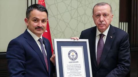 En fazla fidan dikme dünya rekoru belgesi Cumhurbaşkanı Erdoğan' a verildi