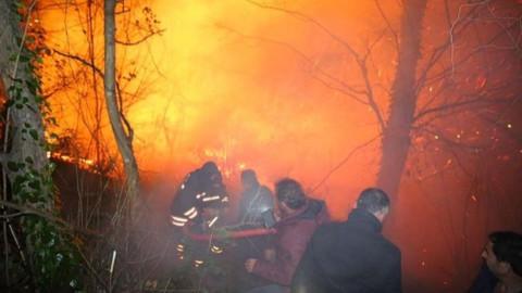 Trabzon yangınlarıyla ilgili 7 kişiye soruşturma