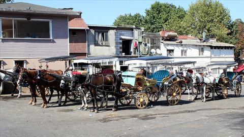 İBB Adalar'daki fayton ve atları kamulaştıracak