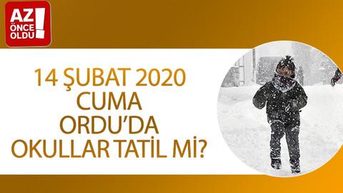 14 Şubat 2020 Cuma Ordu'da okullar tatil mi?