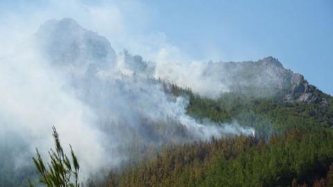 Antalya'da 3 hektarlık alan yandı