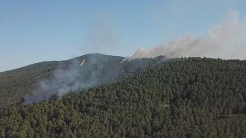 Son Dakika! İstanbul Valiliği: Aydos Ormanı'nda 4 farklı noktada yangın çıkmıştır