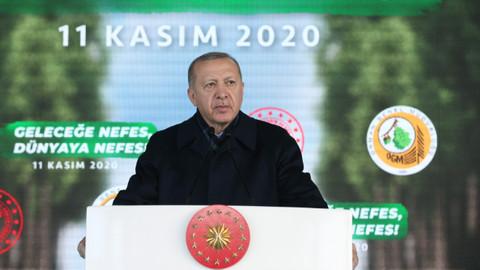 Erdoğan: Eleştirenler PKK'nın yaktığı ormanlardan bahsetmiyor
