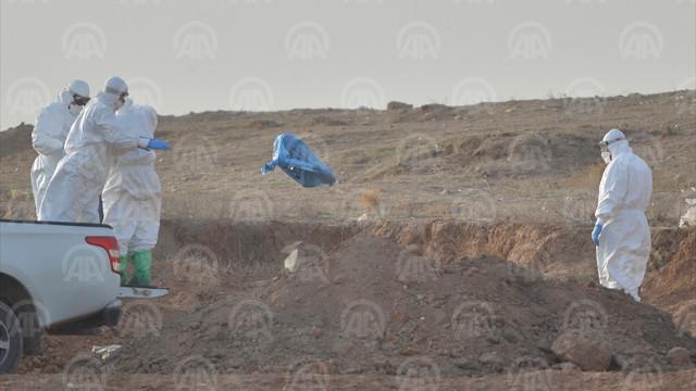 Mardin Kızıltepe'de kuş gribi vakasına  rastlandı Son dakika Mardin haberleri
