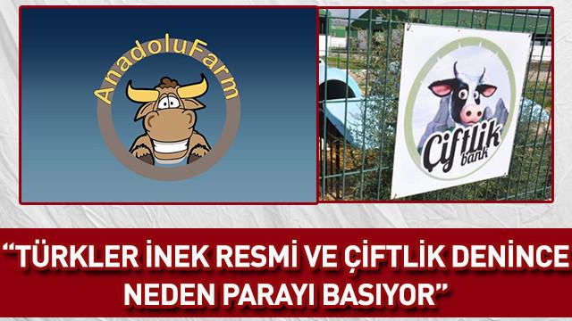 Özkök: Türkler inek resmi ve çiftlik denince neden parayı basıyor