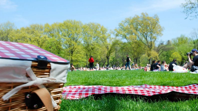 Sevdiklerinizle güzel zaman geçirebileceğiniz Bursa piknik alanları