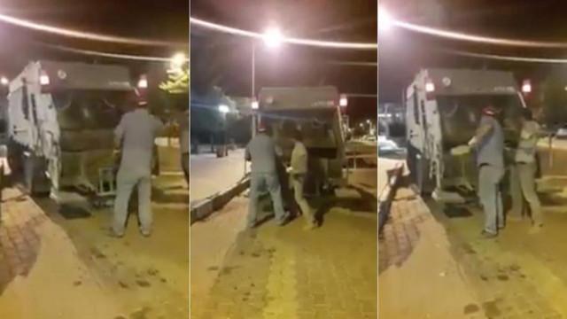 Nevşehir'de köpekleri çöp arabasında ezerek öldürdüler