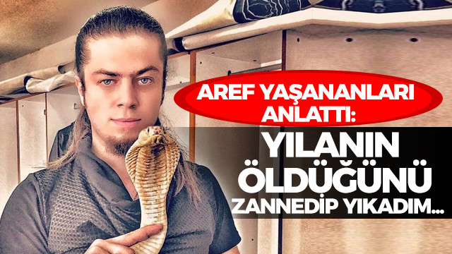 Aref yaşananları anlattı: Yılanın öldüğünü zannedip yıkadım...
