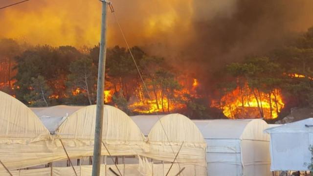 Antalya'da orman yangını... Kırmızı alarm verildi