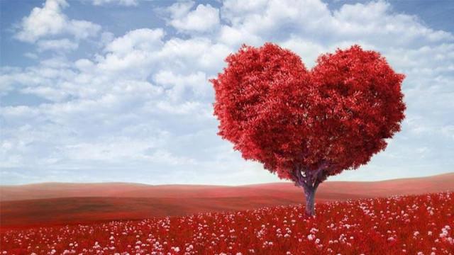 14 Şubat kutlamak günah mı? 14 şubat sevgililer gününde hediye almak neden günah?