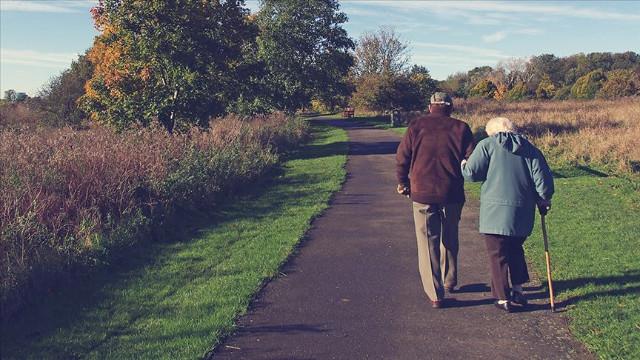 Özmete: Alzaymırlı hasta sayısı 20 yılda ikiye katlanacak
