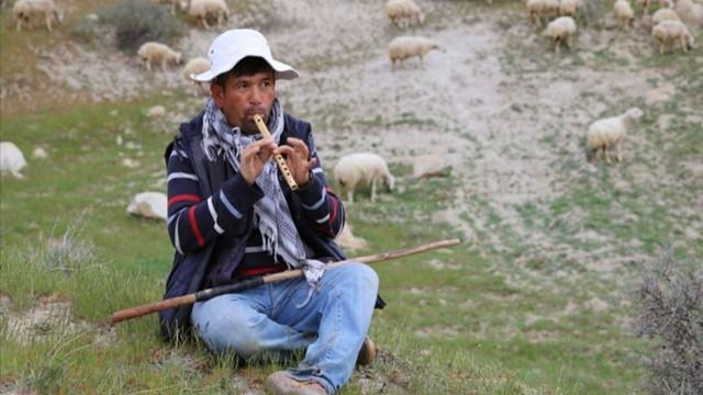 'Afgan çoban getirileceği' iddiasına yalanlama