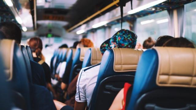Otobüs yolculuklarında evcil hayvan taşınır mı?