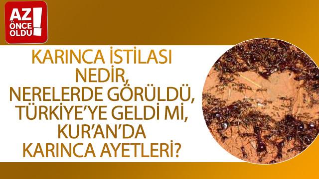 Karınca istilası nedir, nerelerde görüldü, Türkiye'ye geldi mi, Kur'an'da karınca ayetleri?