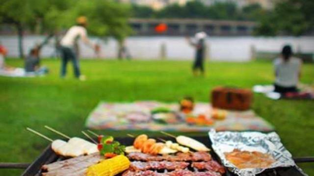 Bakanlıktan yeni önlem! Piknik ve mangala yasak!