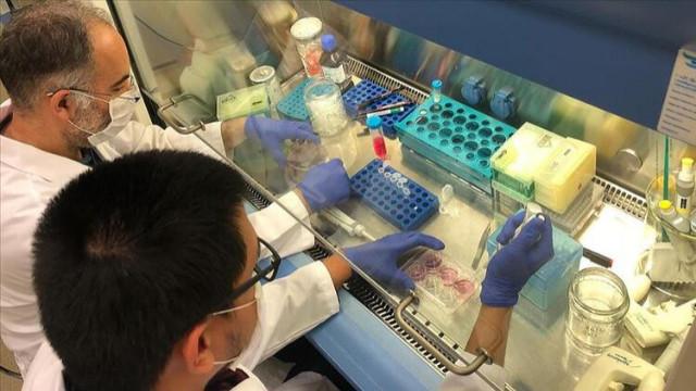Bakan Varank'tan ilaç açıklaması: Haziran ayında bir müjdemiz var