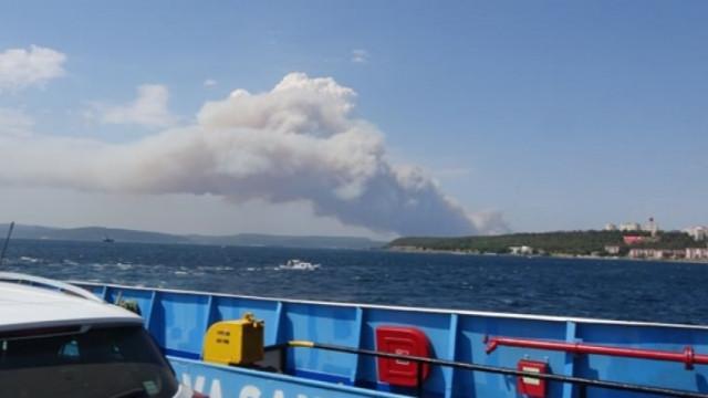 Çanakkale'de bir orman yangını daha!