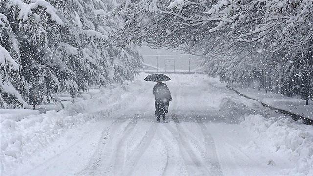 Japonya'da kar fırtınası sürüyor: Ölü sayısı 38'e yükseldi