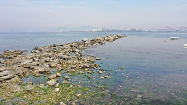 2 bin yıllık tarih! Tuzla'da sular çekilince ortaya çıktı