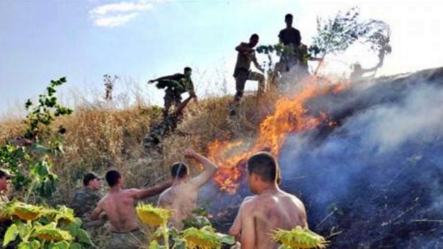 MSB duyurdu: Mehmetçik alevlere müdahale ediyor