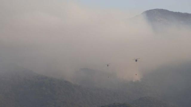 Kazdağları'ndaki yangın kontrol altında