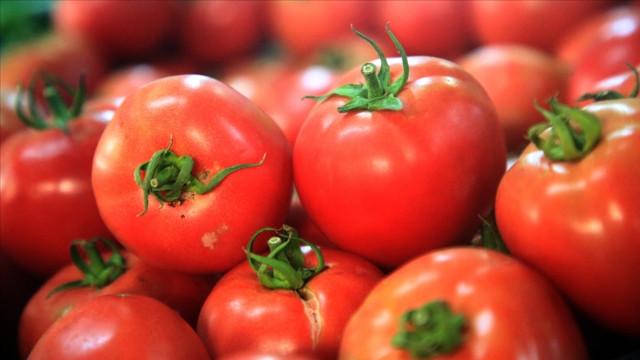 Türkiye'nin meyve sebze ihracatının şampiyonu kiraz ve domates oldu