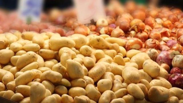 Türkiye patates ve soğanı hangi ülkeden ihraç edecek? Patates ve soğan ihraç eden ülkeler