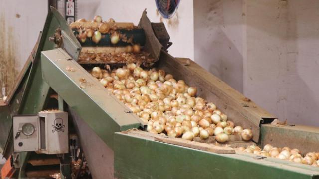 Patates ve soğan fiyatları ne zaman düşecek?