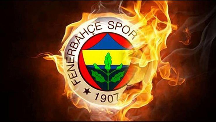 Fenerbahçe'nin Şampiyonlar Ligi kadrosu belli oldu - Sayfa 2