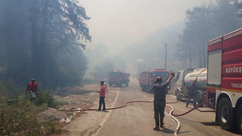Fotoğraflarla Bursa'nın Mudanya ilçesinde çıkan yangında son durum - Page 2
