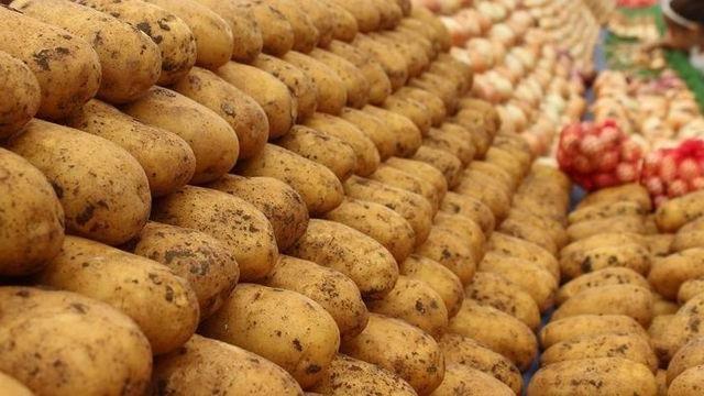 Patates ve soğanda yeni düzenleme! - Sayfa 2