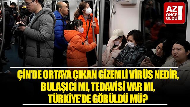 Çin'de ortaya çıkan gizemli virüs nedir, bulaşıcı mı, tedavisi var mı Türkiye'de görüldü mü?