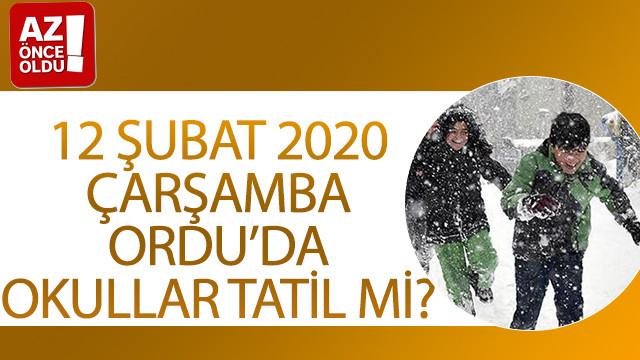 12 Şubat 2020 Çarşamba Ordu'da okullar tatil mi?