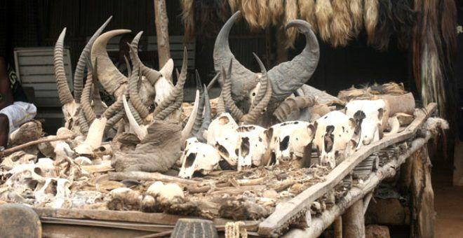 Hayvan kemikleri ile dolu olan pazara sadece büyücüler geliyor! İşte dünyanın en korkunç 10 yeri - Sayfa 1