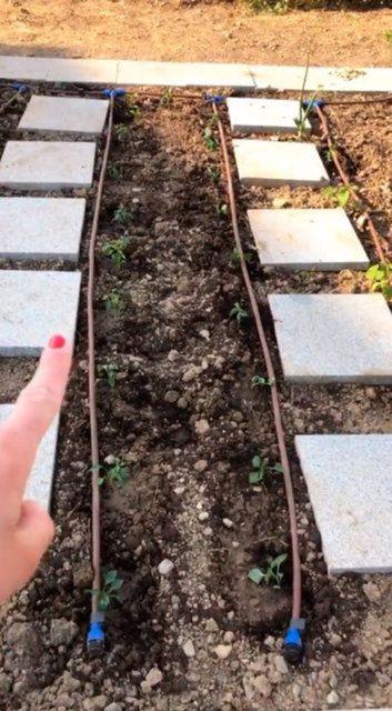Gizem Karaca: Yeşil bir baş parmağım var - Sayfa 3