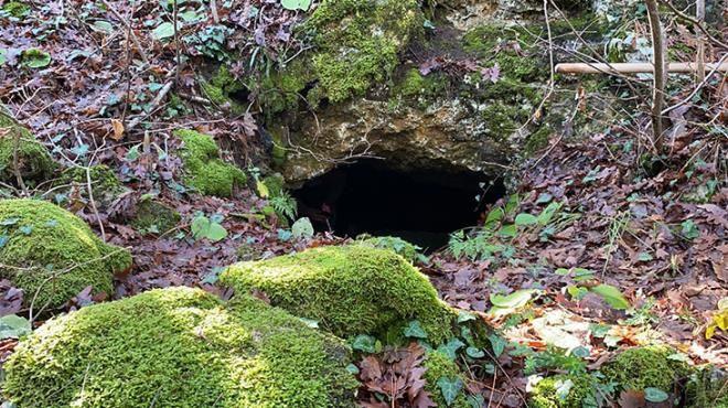 Ormanda koyununu arayan çobanın gizemli keşfi! Duyduğu sesler geceleri uyutmuyor - Sayfa 4