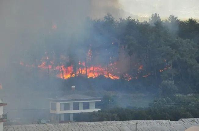 Antalya Manavgat'ta büyük yangın kontrol altında! - Sayfa 1